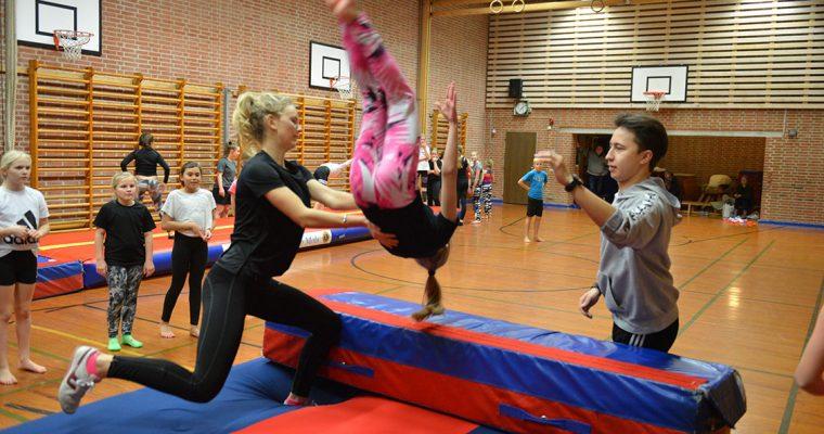 Børne-sommergymnastik og -spring